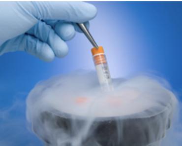 耐低溫與實驗室標籤